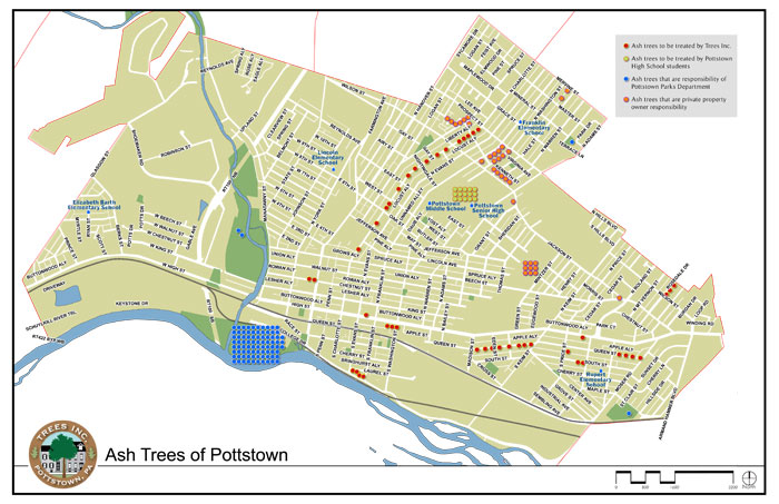 L2-hylton-trees-tree-map