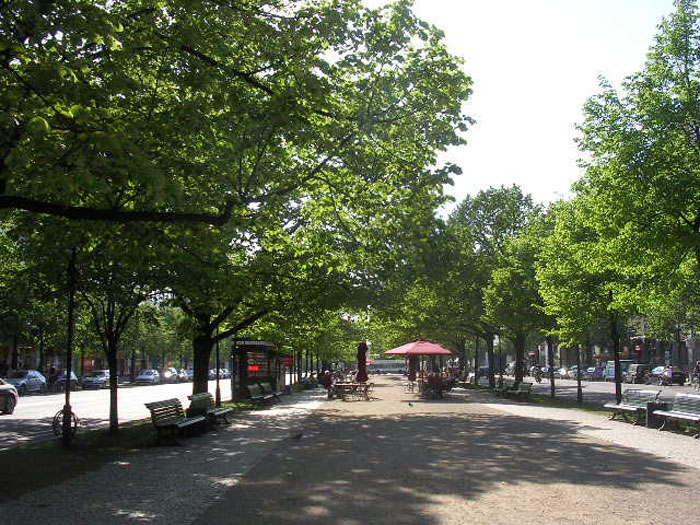 Greening Our Cities And Towns